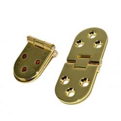 Metalen goudkleurige scharnier (30mm x 80mm)