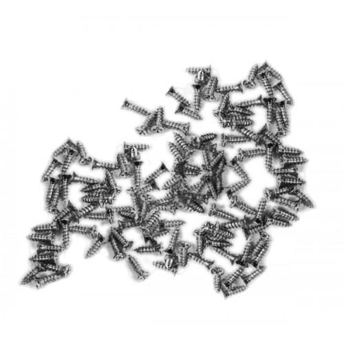 100 mini schroefjes (2.5x8 mm, verzonken, zilverkleur)