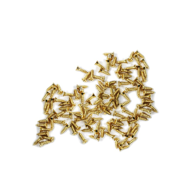 100 mini screws (2.5x8 mm, countersunk, gold color)